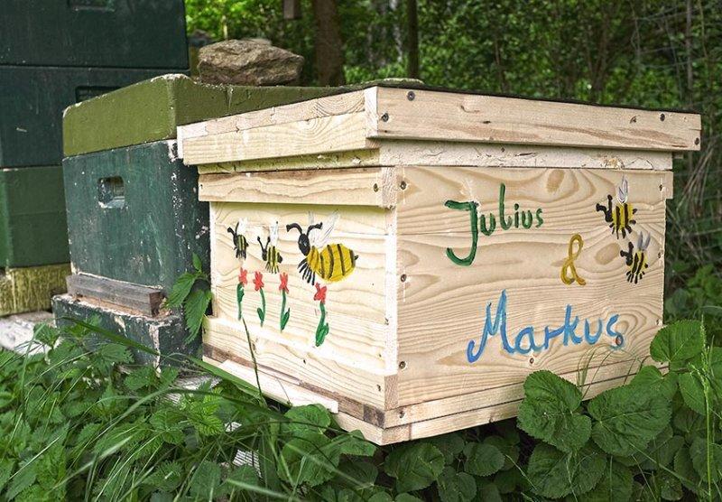Bienenkiste-Markus-Julius-1-10x15s
