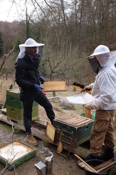 Frühjahrsputz-am-Bienenstand-2-10x15s