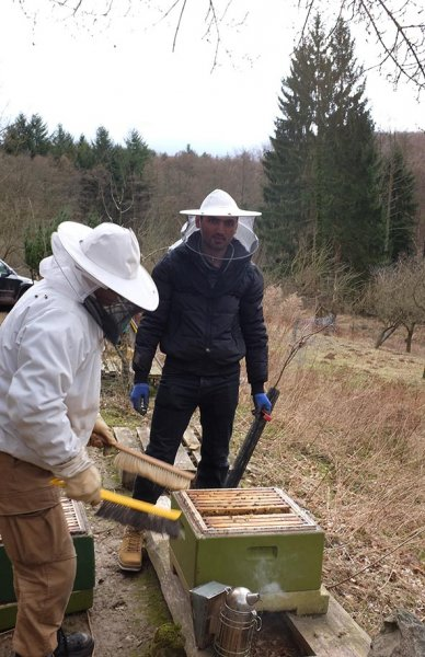 Frühjahrsputz-am-Bienenstand-3-10x15s