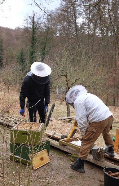 Frühjahrsputz-am-Bienenstand-5-10x15s