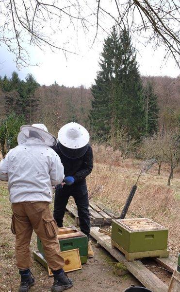 Frühjahrsputz-am-Bienenstand-7-10x15s