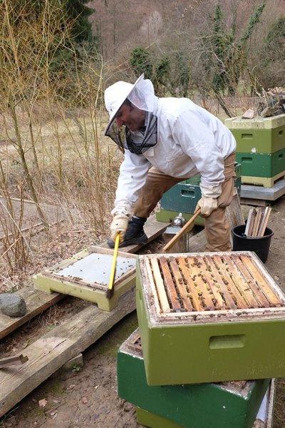 Frühjahrsputz-am-Bienenstand-4-10x15s