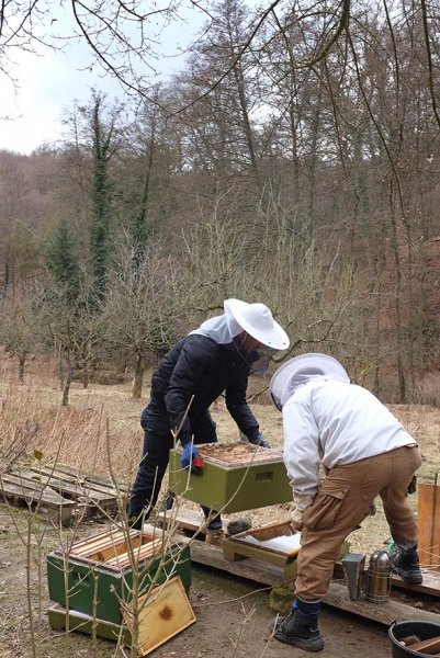 Frühjahrsputz-am-Bienenstand-6-10x15s