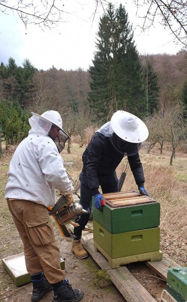 Frühjahrsputz-am-Bienenstand-8-10x15s