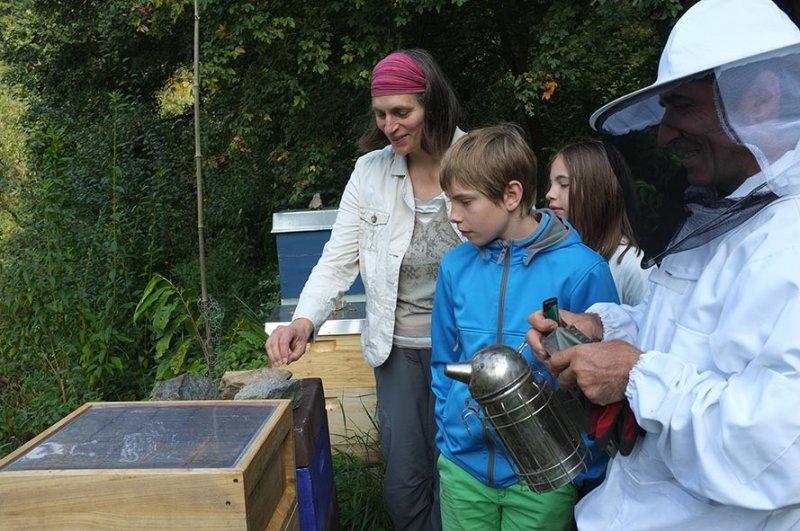 Bienenstand-Etzwiesen-1-small