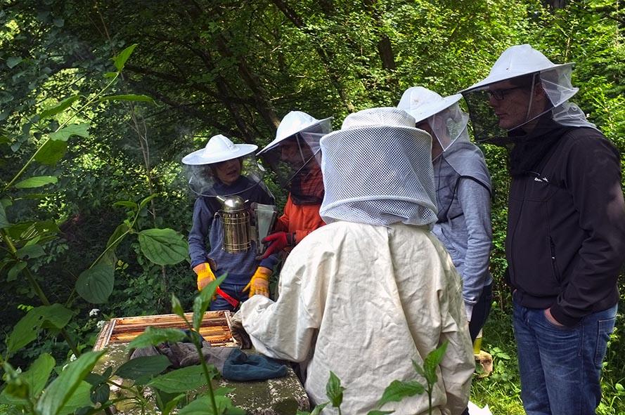 Bienenstand Etzwiesen 3