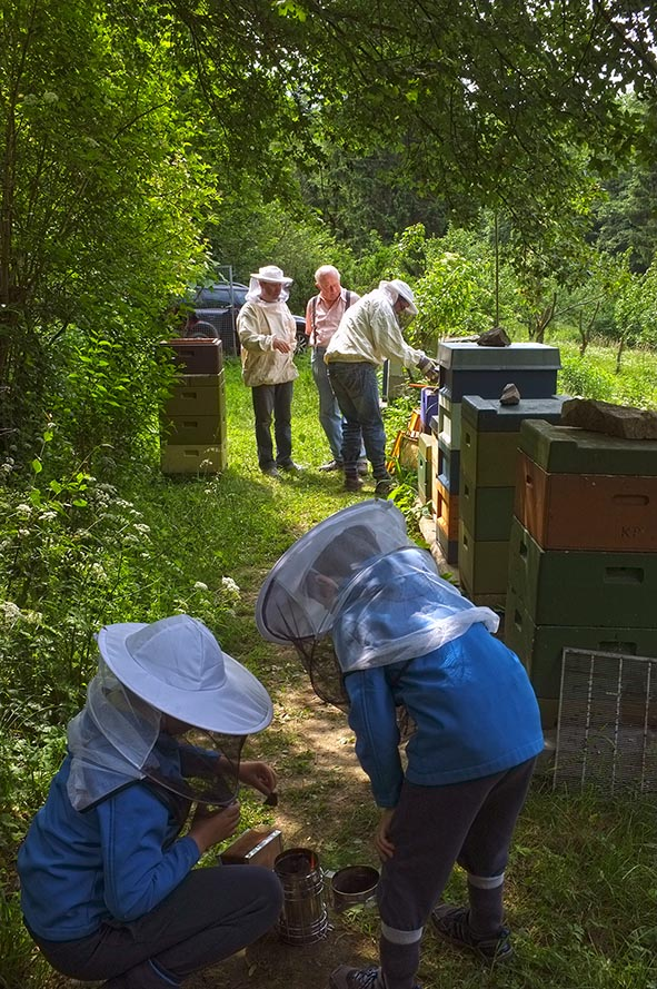 Bienenstand Etzwiesen 4
