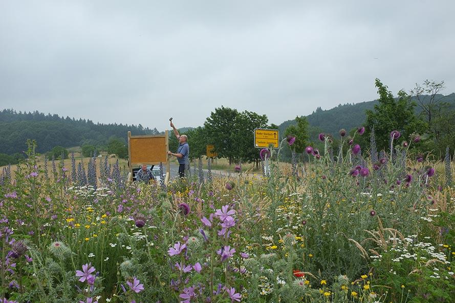 Blumenwiese 14 10x15s