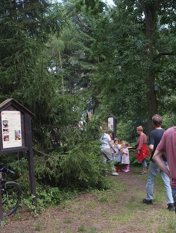 Lernort Natur in Hähnlein - Bienenlehrpfad