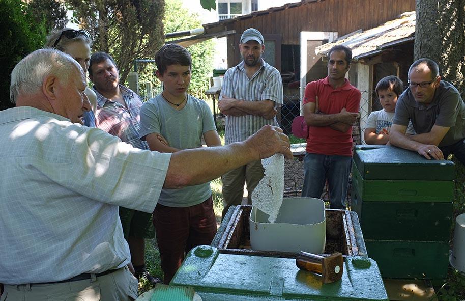 Sommerfest Imkerverein - Standbegehung 08