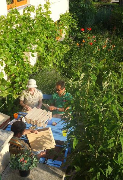 Dickwaben drahten in Eckig Garten 1