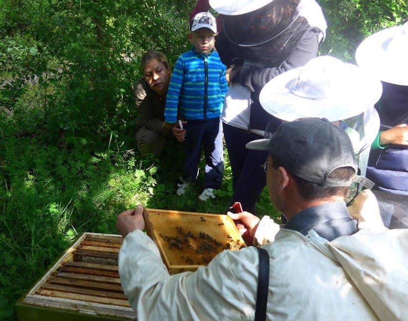 Besucher am Bienenstand 07