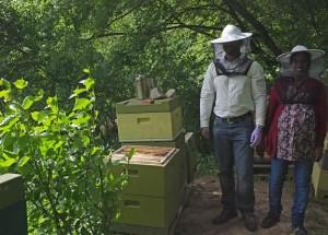Fotos: Tino Westphal – Besuch am Bienenstand