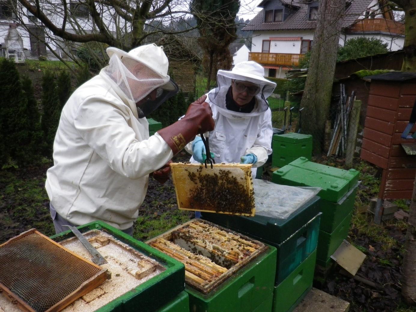 Fotos: Friedel und Heike bei der Behandlung der Bienenvölker