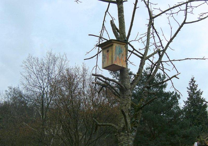 Zwei Nisthilfen für Vögel auf der Bienenweide – von den Kindern des Waldkindergartens gebaut.