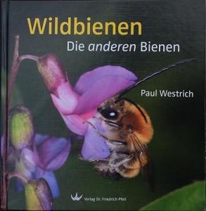 Wildbienenexkursion-Tischendorf-Buchempfehlung-3-10x10s