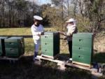 Es geht los… die Honigräume sind drauf, auf ein tolles Bienenjahr!